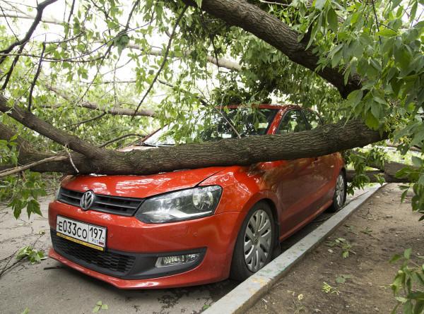 Семь поврежденных машин и 19 подтопленных подвалов: в МЧС рассказали о последствиях суперливня в Петербурге