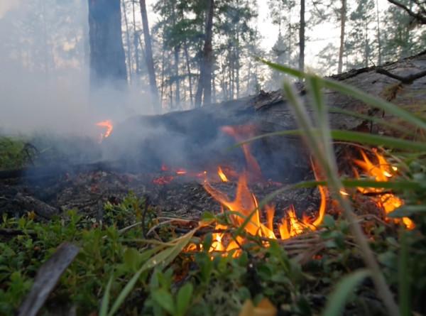 Якутское село Кылайы эвакуировали из-за природного пожара