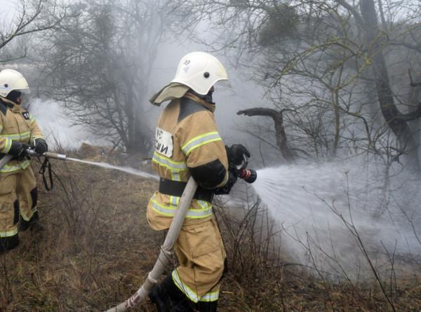 Площадь лесных пожаров в России выросла на 90 тысяч гектаров