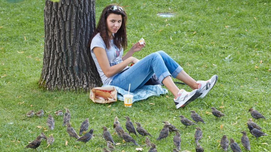 Девушка и птицы,девушка, птицы, парк, отдых, жара, лето, макдональдс, ,девушка, птицы, парк, отдых, жара, лето, макдональдс,