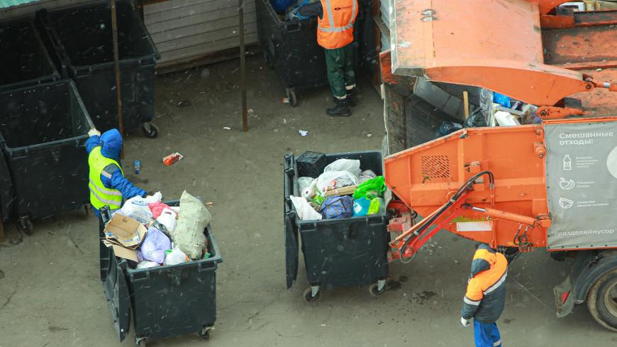 Контейнерные площадки и мусорные баки модернизируют в Подмосковье