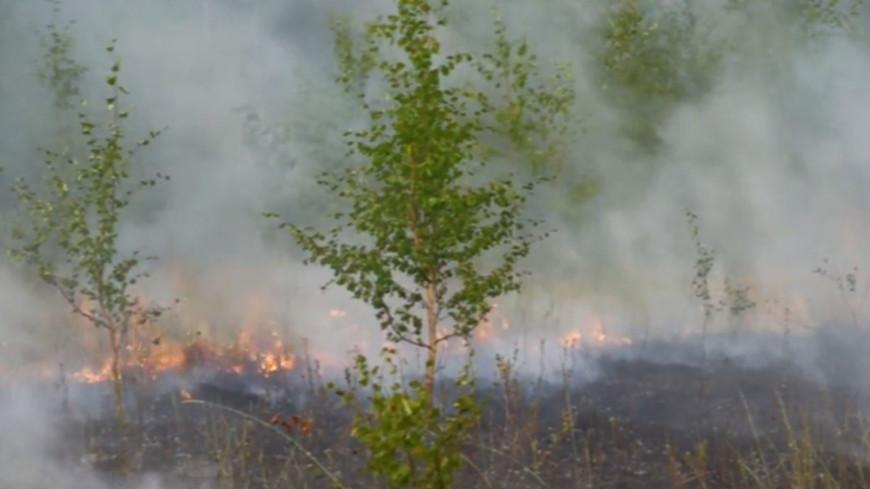 Ничего не видно и нечем дышать: в Якутии плотный дым от пожаров окутал города