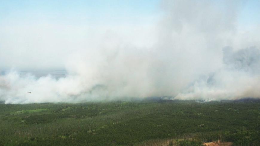 Мгла накрыла Красноярский край из-за лесных пожаров в Якутии