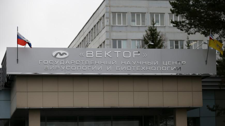 Новую вакцину новосибирского центра «Вектор» зарегистрируют в августе