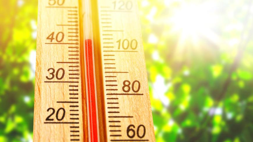 Июль 2021 года признали самым жарким месяцем в истории