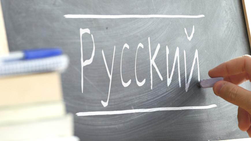 Насколько хорошо вы знаете русский язык? Тест на школьные знания