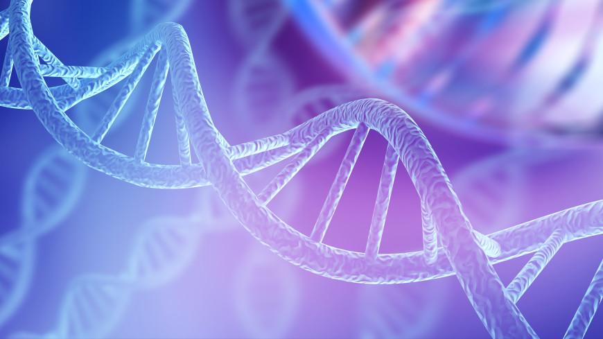 «Мусорная» ДНК оказалась критически важна для видообразования