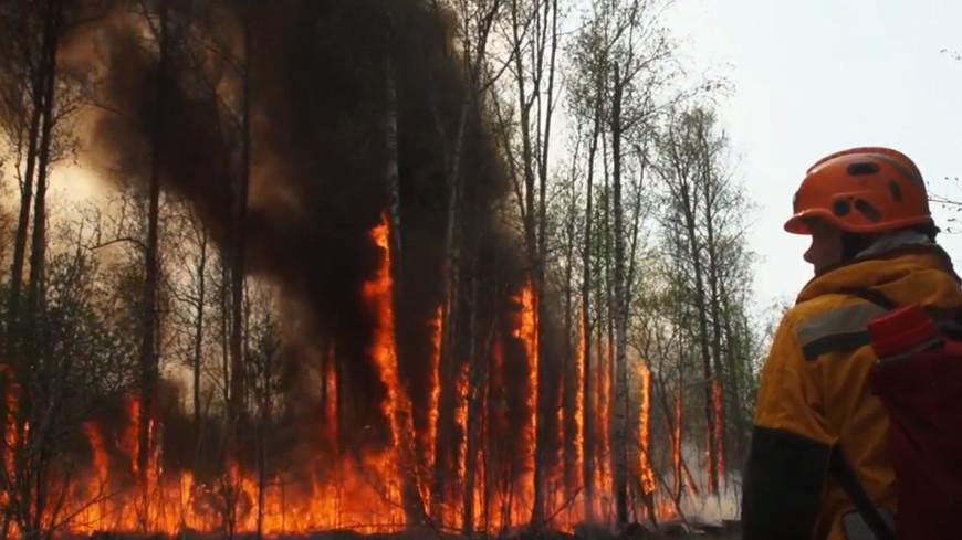 Огонь не сдается: площадь пожара у якутского села Кылайы за сутки увеличилась в восемь раз