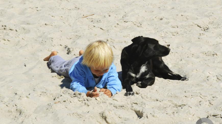 """Фото: Анжелика Сафронова, """"«Мир24»"""":http://mir24.tv/, собака, песок, пляж, море, туризм, дети, детство, ребенок"""