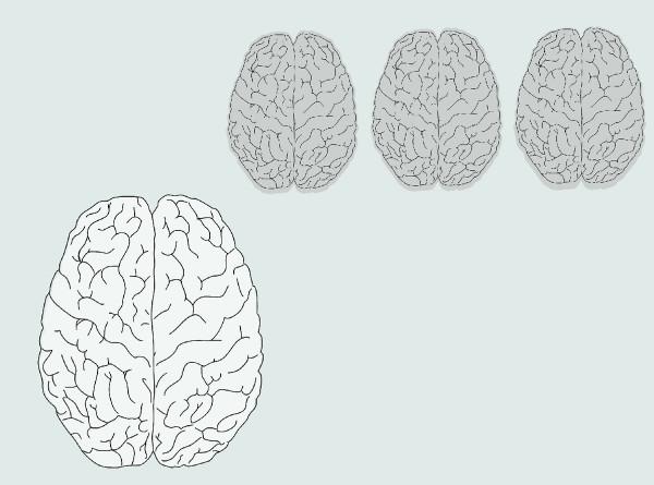 В США вырастили мини-мозги неандертальца