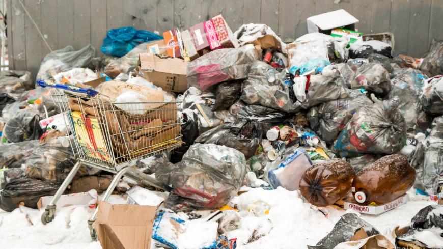 "Фото: Дмитрий Белицкий (МТРК «Мир») ""«Мир 24»"":http://mir24.tv/, помойка, бомж, бомжи, свалка, мусор, мусорка, мусорный контейнер"