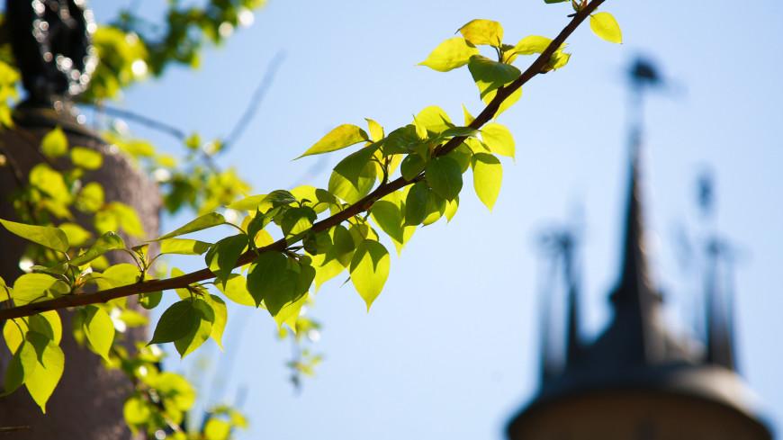 Синоптик рассказал, когда москвичам ждать прихода весны