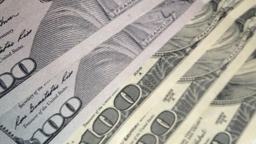 """Фото: Светлана Родина, """"«МИР 24»"""":http://mir24.tv/, доллары, деньги"""