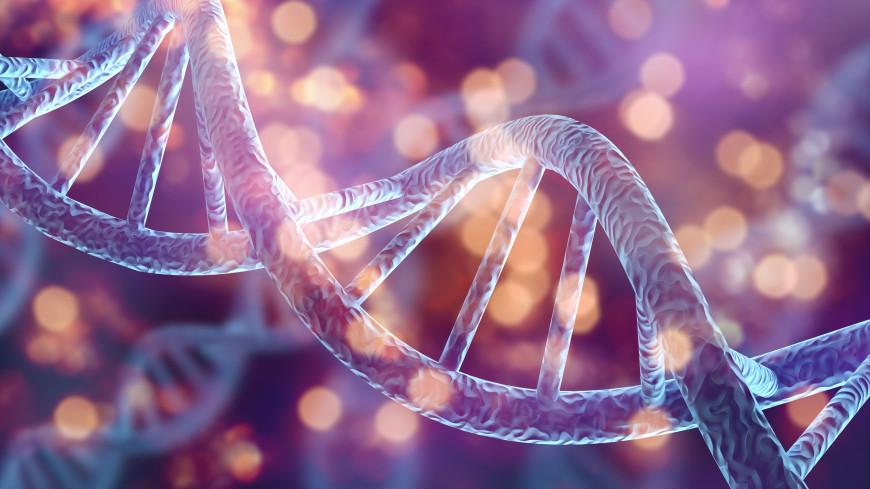 Британские ученые сняли на видео «танцующую» ДНК