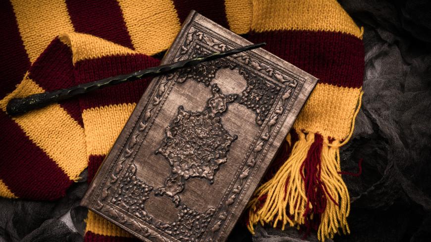 Масштабная выставка о Гарри Поттере состоится в 2022 году