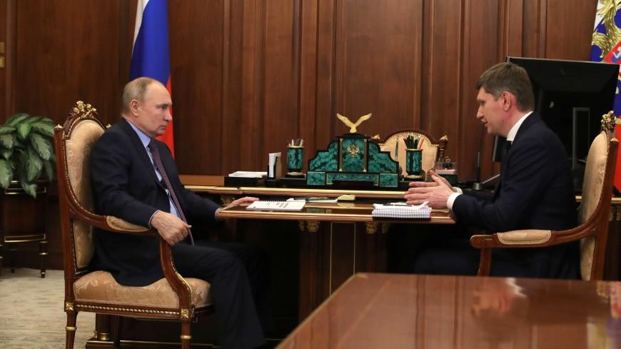 Путин призвал Решетникова не тянуть с предложениями по поддержке самозанятых