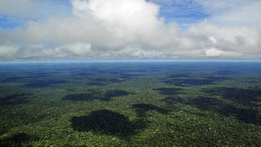 В Амазонии нашли древние оборонительные сооружения