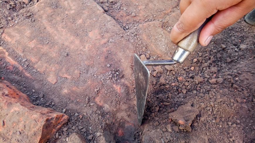 В Волгоградской области археологи нашли стоянку древнего человека