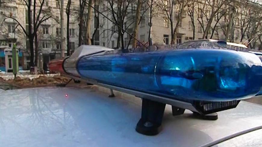 """Скриншот:  """"«Мир24»"""":http://mir24.tv/, происшествия, полиция, мигалка, милиция, дтп"""