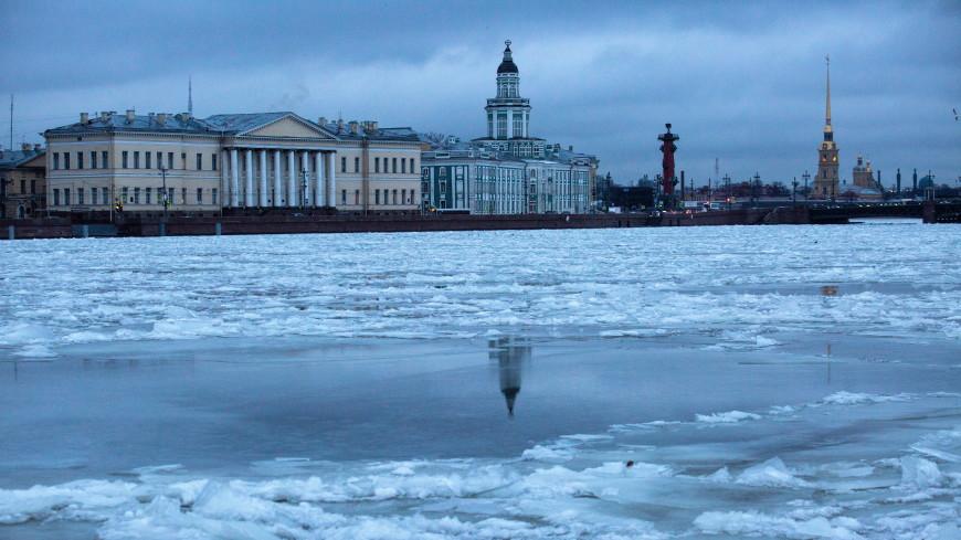 В Петербурге из учреждения РАН пропала часть ценного документа XII века