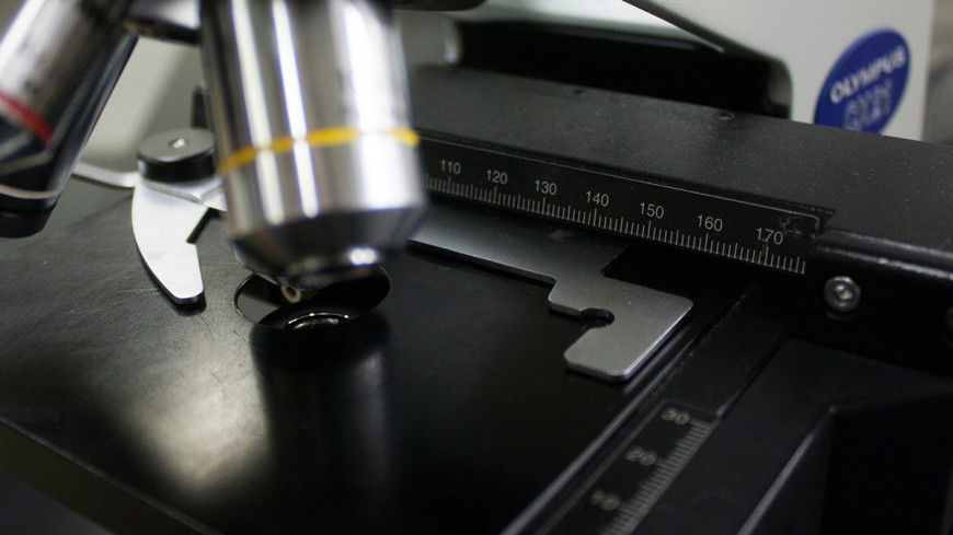 """Фото: Елена Андреева, """"«Мир24»"""":http://mir24.tv/, микроскоп, лаборатория, медицина"""