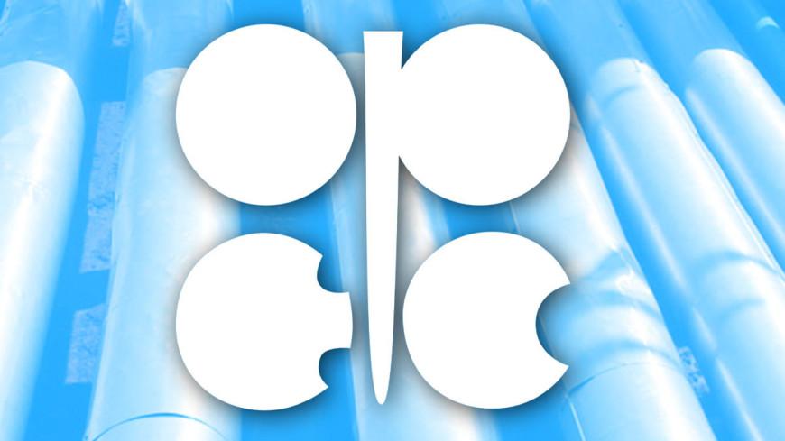 Из стран ОПЕК+ добычу нефти в феврале и марте увеличат только Россия и Казахстан