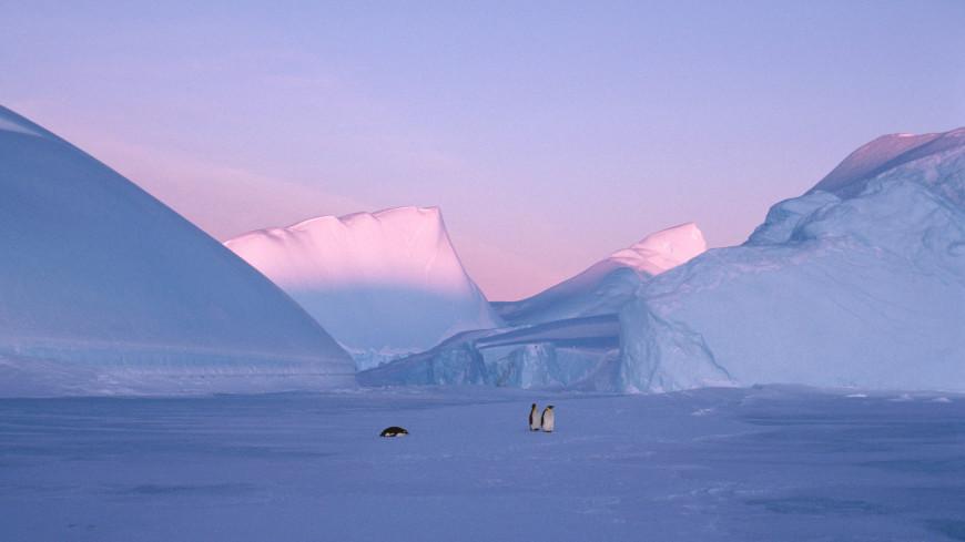 В США создали ледяного робота для изучения Антарктиды