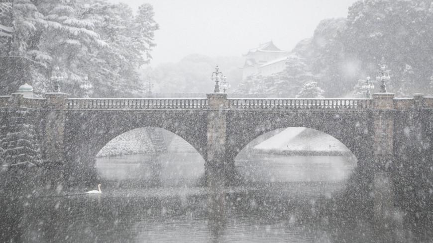 В Японии из-за снегопада и штормового ветра пострадали почти 80 человек