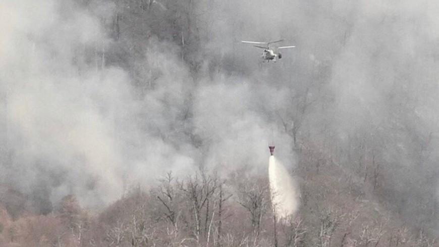 В Сочи удалось потушить все лесные пожары