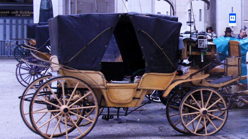 В Санкт-Петербурге карета с лошадьми протаранила легковушку