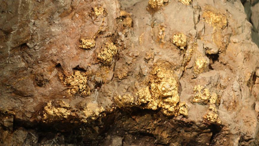 В Якутии в 2020 году добыли рекордные 39 тонн золота