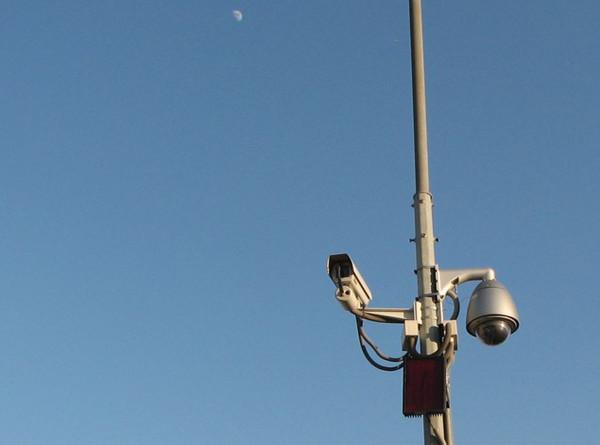 Камеры в Москве выписали водителям более 56 тысяч штрафов за непристегнутый ремень и телефон в руках