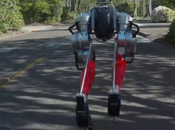 Робот-легкоатлет: двуногий механизм пробежал пять километров