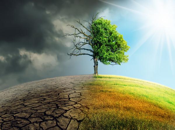 «Человек не способен предотвратить катастрофы»: эколог рассказал о причинах стихийных бедствий