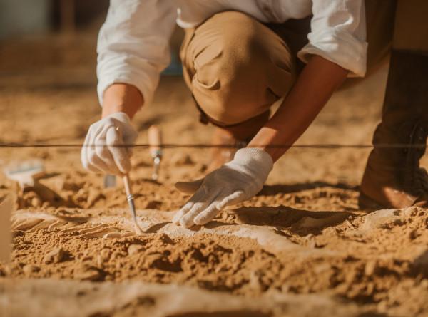 В Марокко нашли каменные топоры возрастом 1,8 млн лет