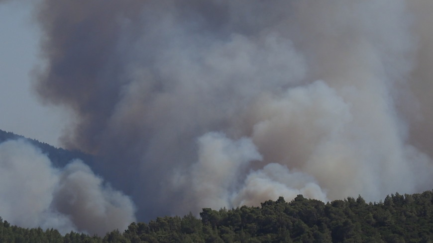 Турецкие волонтеры чудом выбрались из огненной ловушки