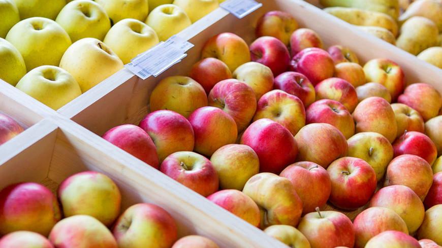 """Фото: Алан Кациев (МТРК «Мир») """"«Мир 24»"""":http://mir24.tv/, яблоки в ящиках, здоровое питание, диета, пост, детокс, яблоки, фрукты"""