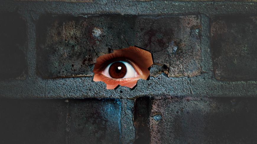 Ученые нашли способ «видеть» сквозь стены