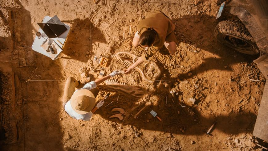 В Британии нашли «Помпеи Юрского периода»