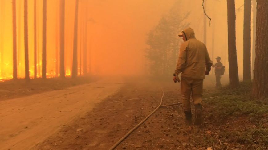 Режим ЧС: к тушению пожаров в Якутии и Карелии стягивают силы со всей России