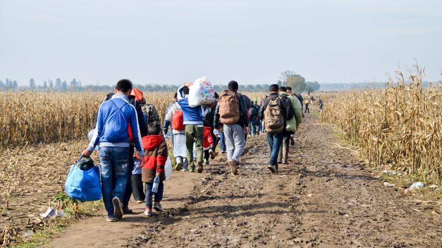 Совет ПА ОДКБ призвал предотвратить потоки беженцев из Афганистана