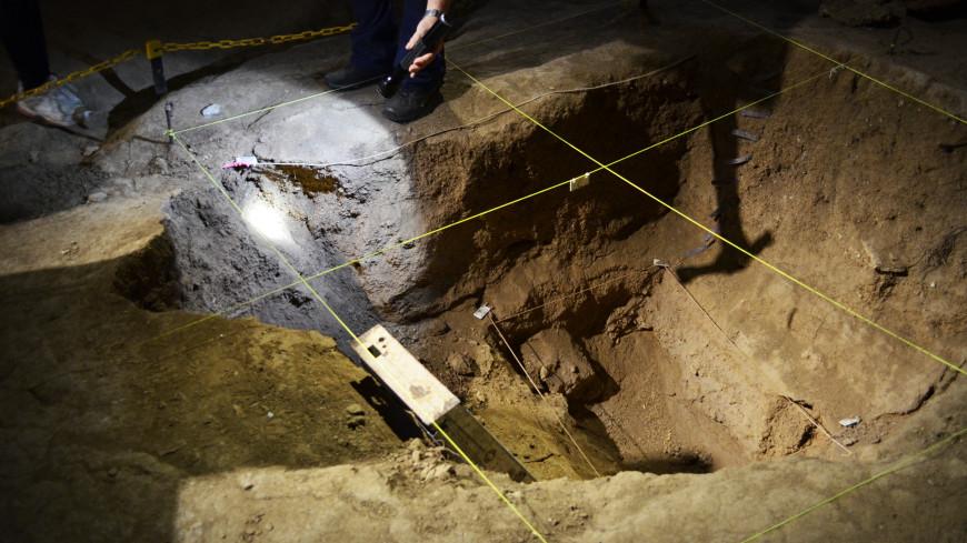 В Аргентине нашли кости последней гигантской летучей мыши-вампира