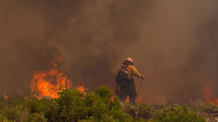 Обзор зарубежных СМИ: лесные пожары в США и футбольный праздник в Италии