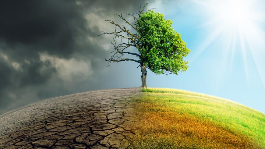 ООН: За 50 лет из-за опасных климатических явлений погибли более двух млн человек