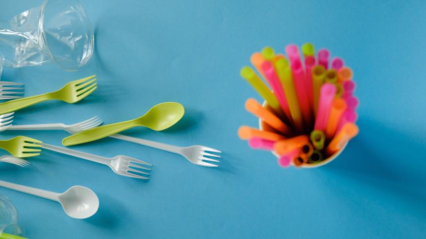В ЕС окончательно запретили одноразовую посуду, трубочки и ватные палочки