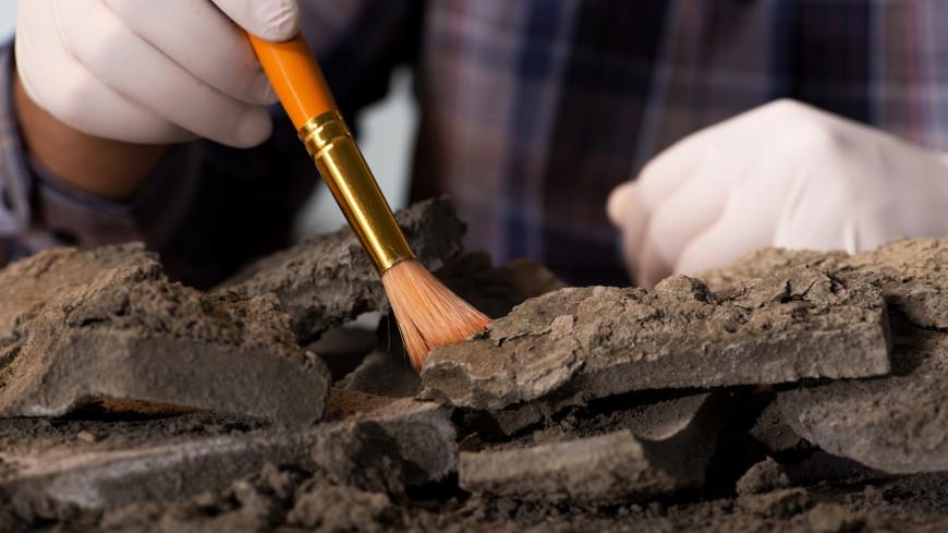 В Швеции раскопали тысячелетнее кладбище викингов