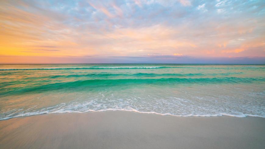 Первый COVID-free пляж откроется в Сочи