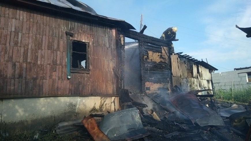 При пожаре в летнем домике под Тамбовом погибли женщина и двое ее детей