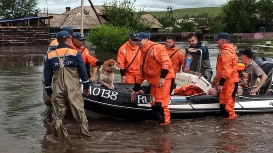 В забайкальском городе Шилка затопило около тысячи приусадебных участков и 450 домов