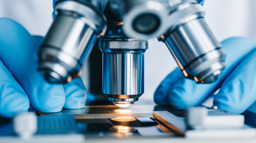 Ученые из США открыли новую фазу жидкости